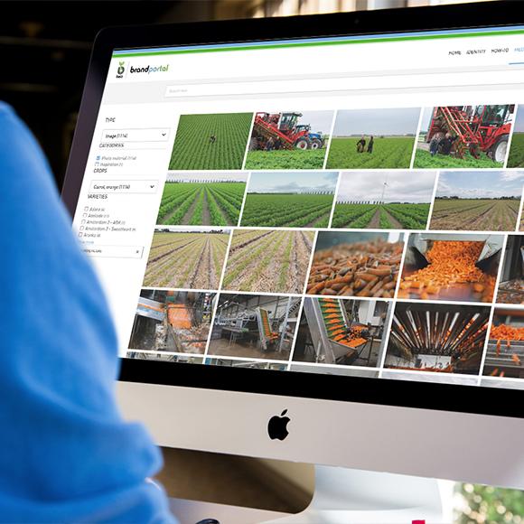 Afbeelding van de brandportal van Bejo op desktop
