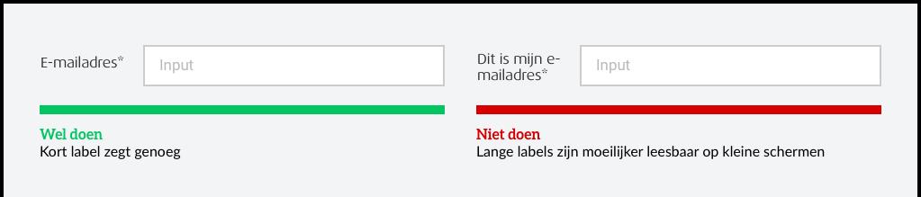 Afbeelding waarin het belang van duidelijke formulier labels wordt gedemonstreerd, houdt labels beknopt.