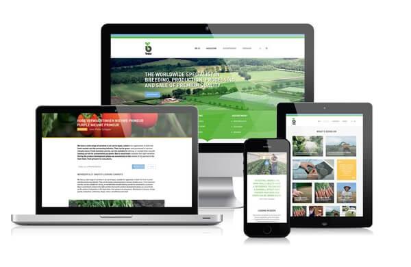 Een demonstratie van de diverse responsive vormen die de website van Bejo aanneemt